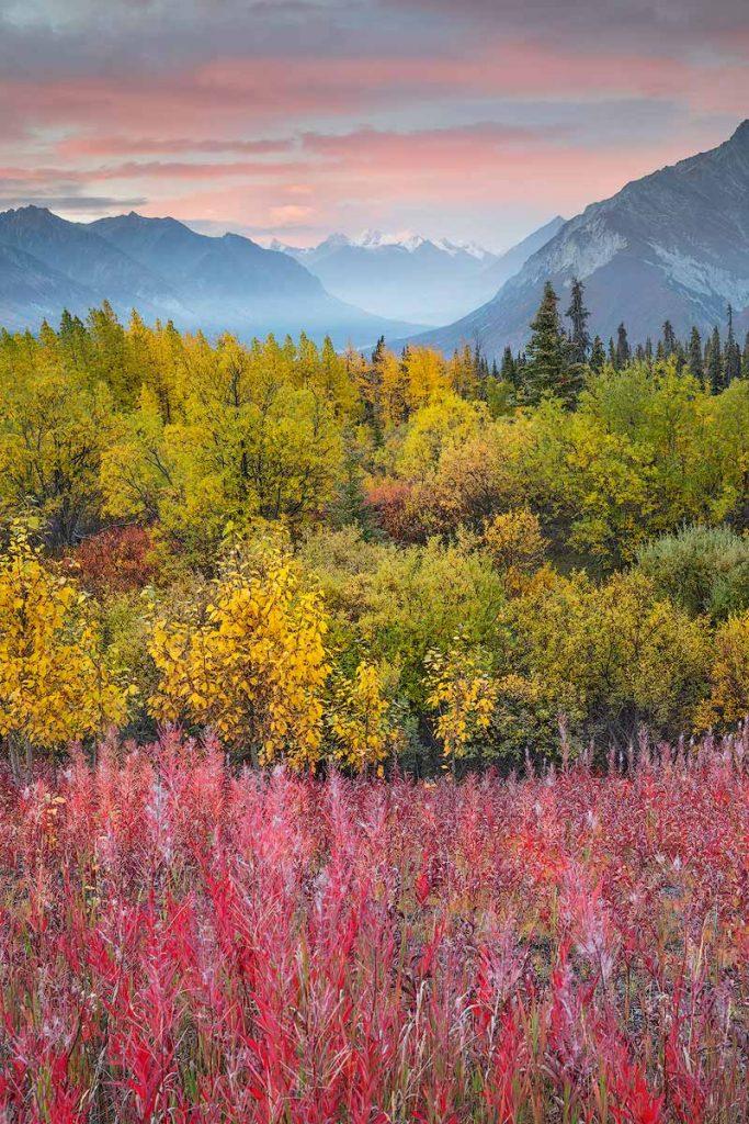 alaska-viaggio-fotografico