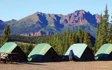 denali-camping-alaska