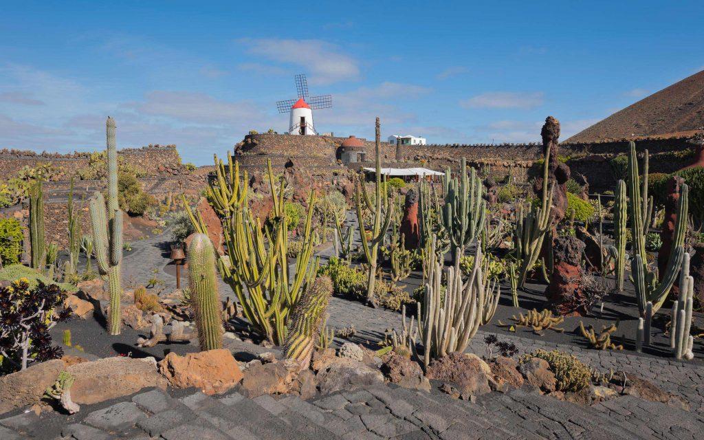 viaggio fotografico a Lanzarote
