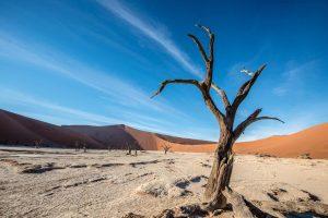 namibia-testata