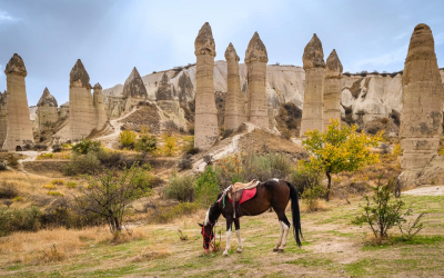 Horses with famous rock formations at background in Love valley,