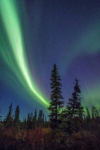 alaska-fotografico-punto-viaggio10