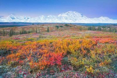 alaska-fotografico-punto-viaggio9