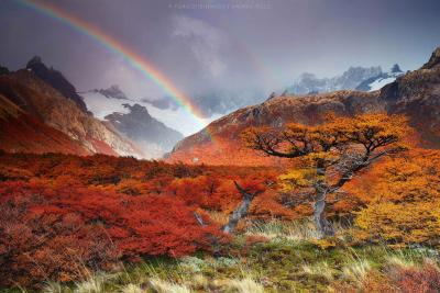 patagonia-viaggio-fotografico-punto-viaggio-(19)