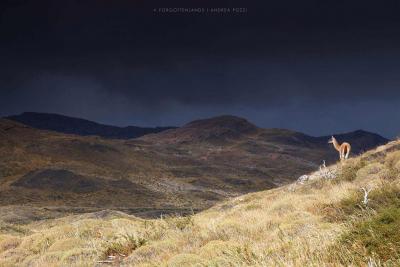 patagonia-viaggio-fotografico-punto-viaggio-(20)