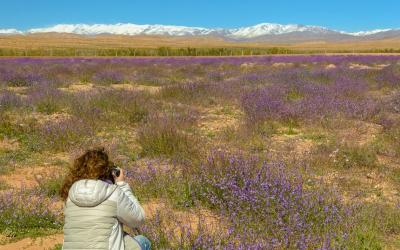 viaggio-fotografico-marocco (14)