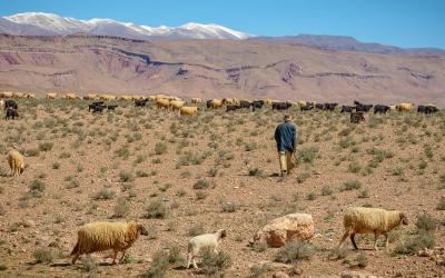 viaggio-fotografico-marocco (15)