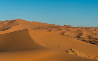viaggio-fotografico-marocco (27)