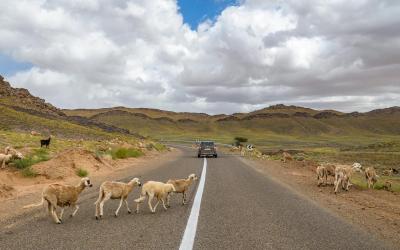 viaggio-fotografico-marocco (6)