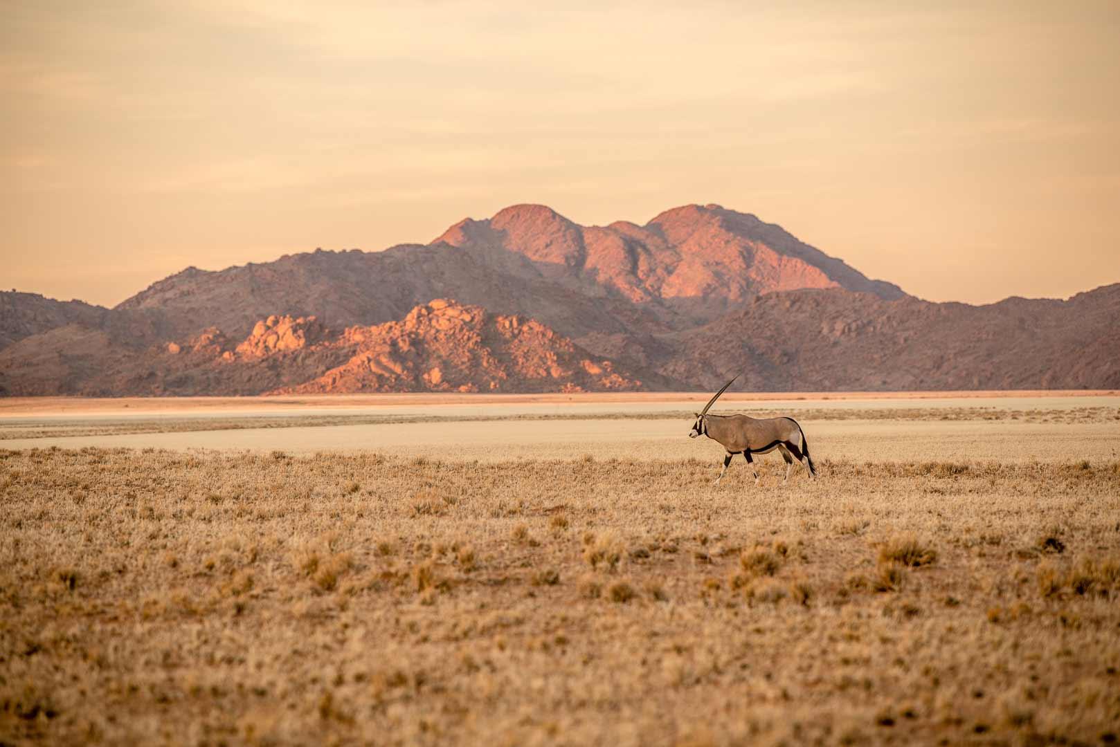 sito di incontri gratuito Namibia