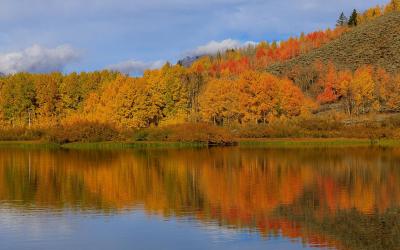 The Scenic Landscape Of Grand Teton National Park In Autumn
