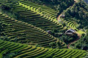 Viaggio Fotografico in Vietnam